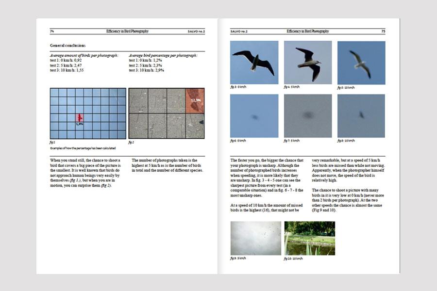 Salvo2_birds